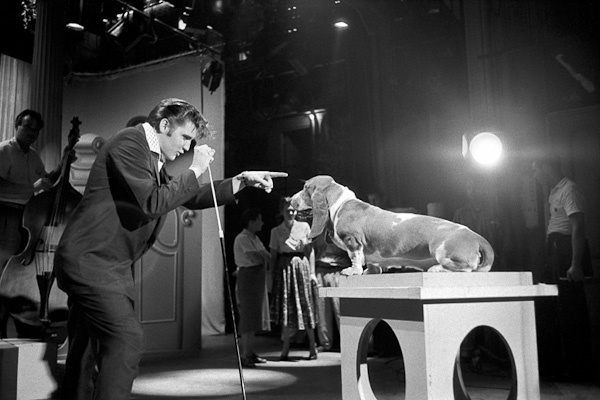 Elvis Sings To theBasset Hound by Alfred Wertheimer