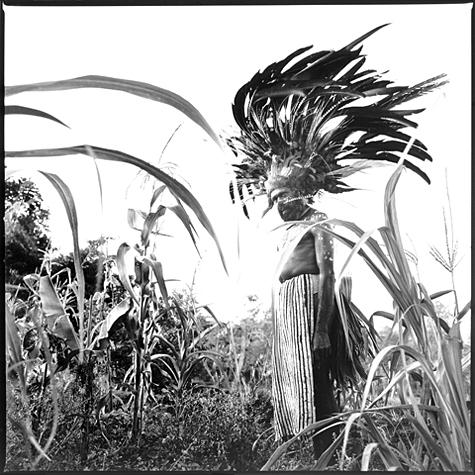 Wahgi Valley man dressed in full bird-of-paradise costume by Chris Rainier