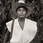 Chamula Mayan Boy with Sombrero, Chiapa, Mexico, 1987 by Dana Gluckstein
