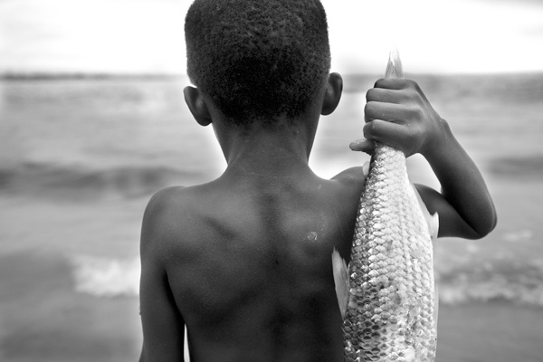 Fish-Ghana by Lisa Kristine