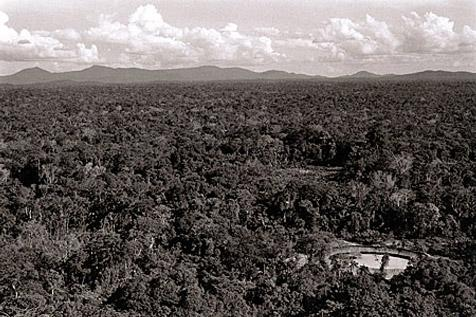 Aerial View of Doshmosha-teri, Venezuela, 1996 by Valdir Cruz
