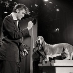 Elvis Sings to Hound Dog