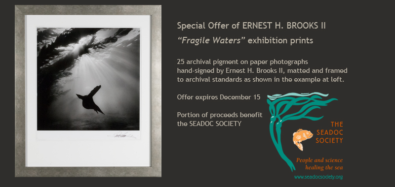 Ernest H.Brooks II special print offer