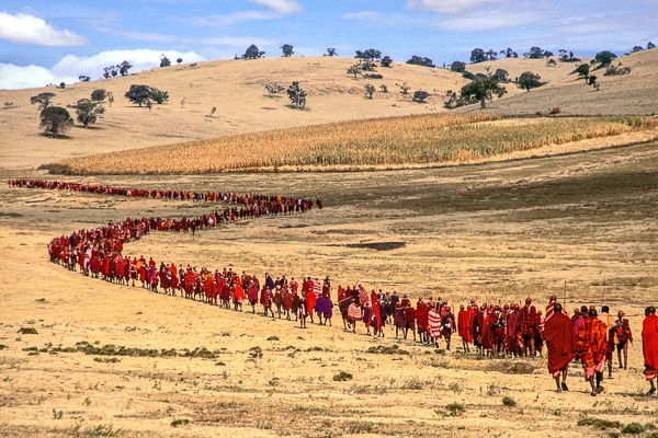 Salei Maasai Warriors approach the Ceremonial Manyatta, Tanzania by Carol Beckwith and Angela Fisher