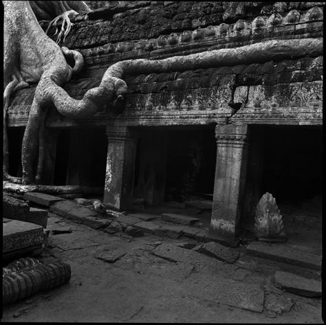 Banyon Temple, Angkor Watt 2 by Chris Rainier