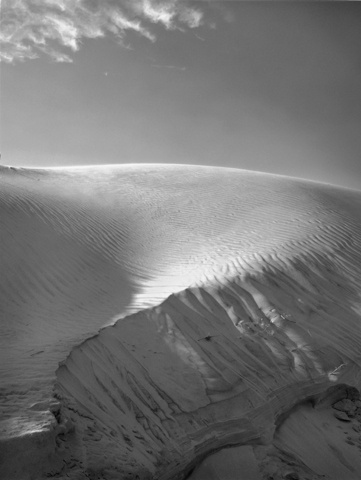 Dune, Early Spring by Dorothy Kerper Monnelly