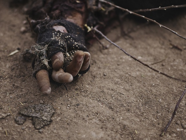 Hand of Martyred Islamic State Soldier by Joey L.