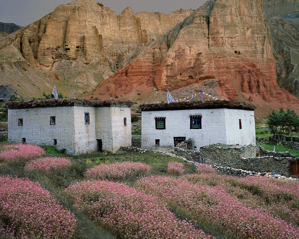 Two Houses, Blossoms, Cliffs by Kenneth Parker