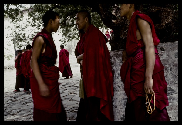 Debating Monks, #7 by Marissa Roth