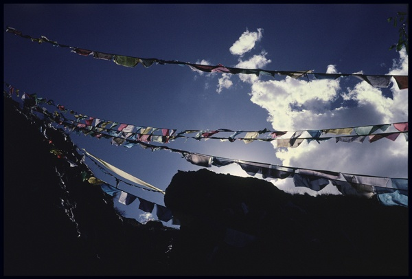 Prayer Flags on a High Pass by Marissa Roth