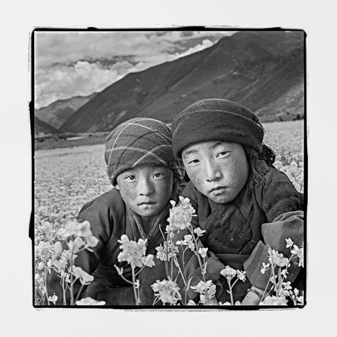 Sisi 8 & Norsum 8, Parka, Tibet by Phil Borges