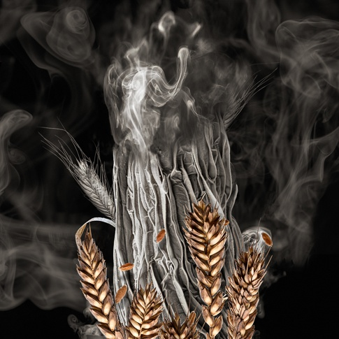 Threats:  Wheat on Fire by Robert Dash
