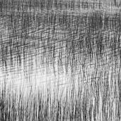 Rushes, Upper Hadlock Pond