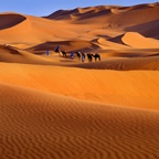 Dunes, Great Sahara
