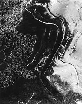"""""""Ice Pattern #4"""", Ipswich, Massachusetts,"""