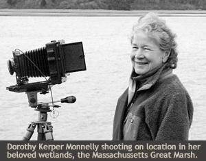 Dorothy Kerper Monnelly