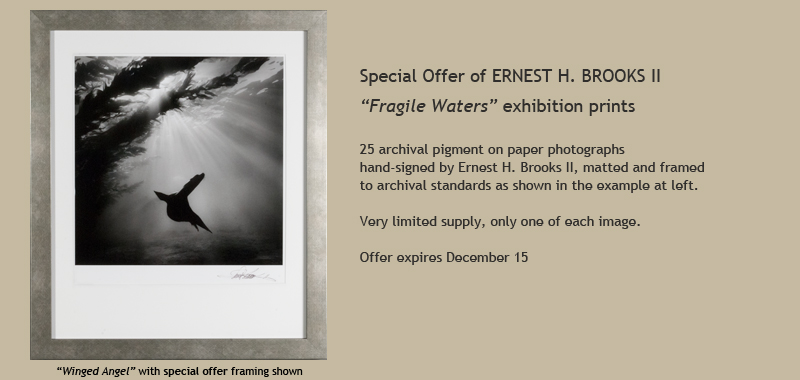 Ernest H. Brooks II special print offer