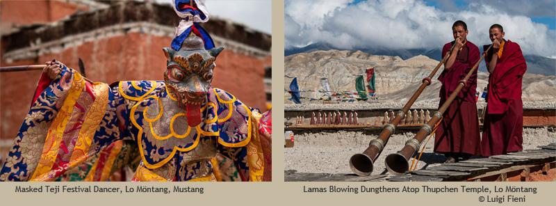 Luigi Fieni: Tibetan Mustang Collection photographs