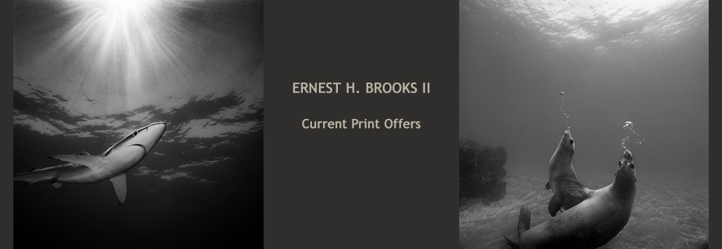 Ernest H Brooks II current print offers